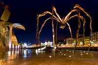 Bilbao - Louise Bourgeois' Spider